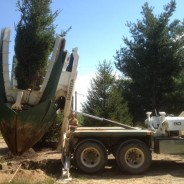 Tree Spades at Work – Instant Spruce Forest