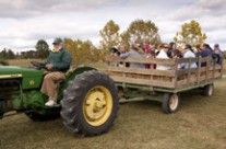 2014 Arborfest At Blandy Experimental Farm – October 11 & 12