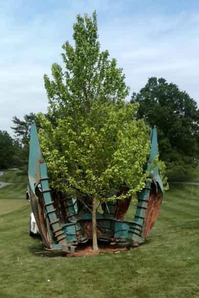Tree Spade Image