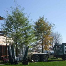 Tree Spades at Work – Moving a Tree from our Tree Nursery