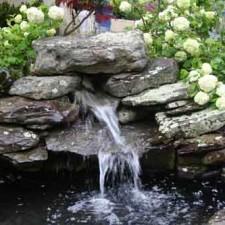 2012 Leesburg Flower and Garden Festival Award Winner