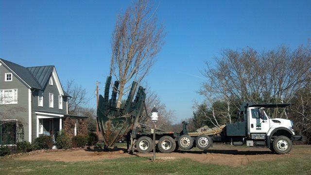 Tree Spade 4