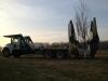 Tree Spade 1
