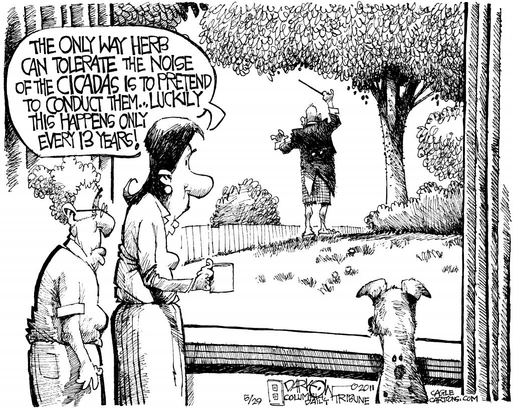 Cicada Cartoon